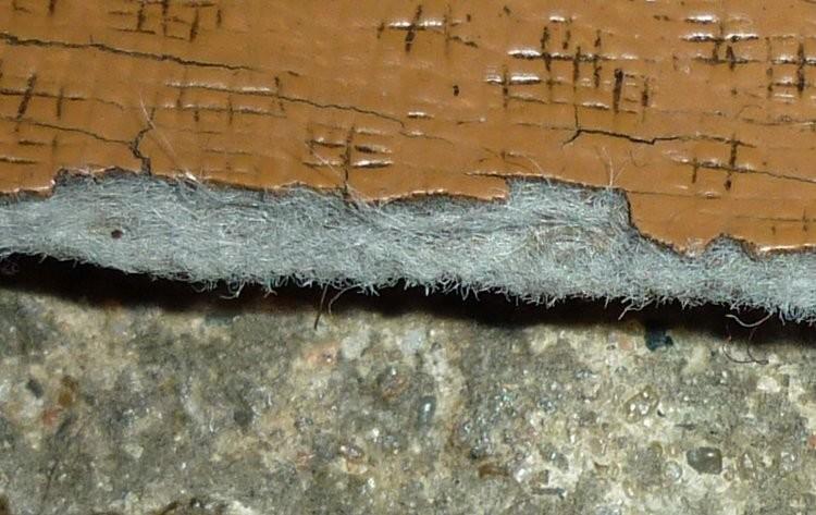 amiante lino zoom fibres