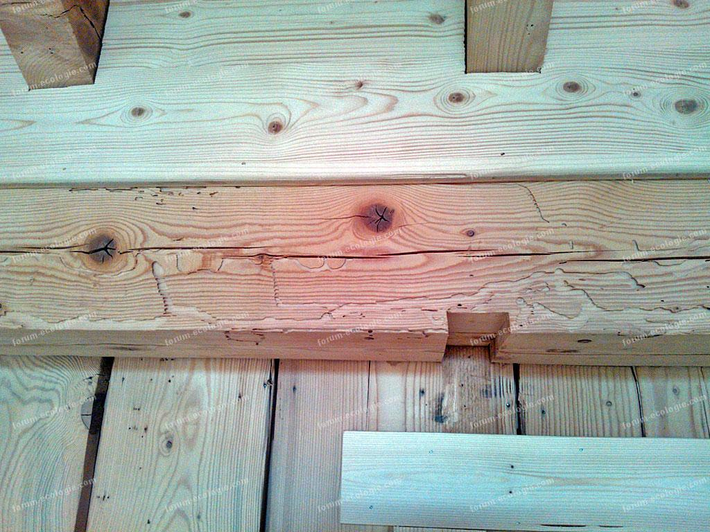 traitement du bois naturel